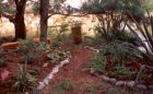 Wattle Garden Path New