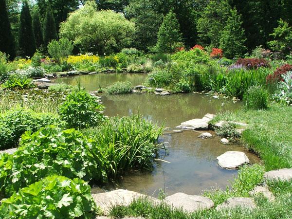 Garden With A Pond Of Botanical Gardens