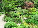 Maples Woodland Garden