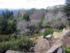 Mount Tomah Rock Garden