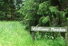 Wildflower Meadow Sign