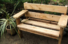Cordyline Garden Bench