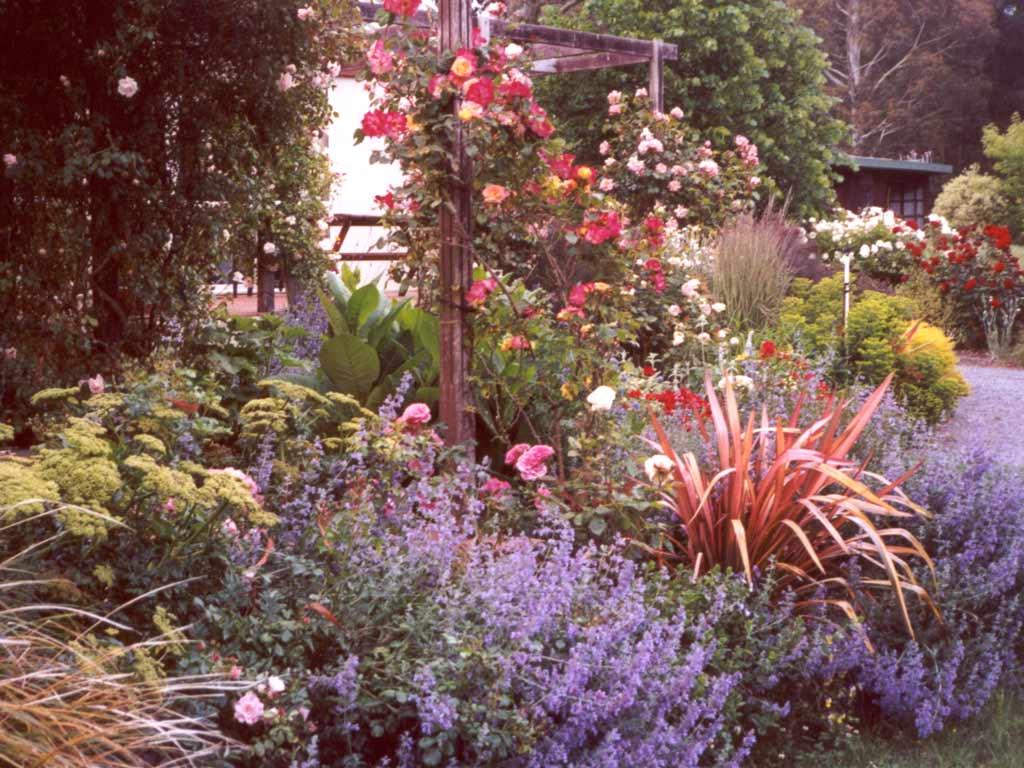 Garden border pictures