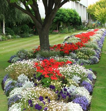Red White Blue Garden ...