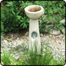Bird Bath Paua