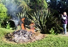 Burning Garden Waste