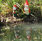 Fishing Gnomes