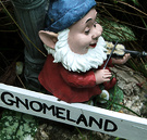 Garden Gnome Fiddle