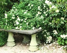 Stone Table Rose