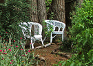 White Chairs Garden