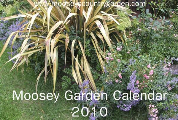Garden Journal 09