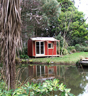 Cottage Pond Cordyline