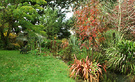 Autumn Glasshouse Garden