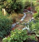 Organised Garden Path