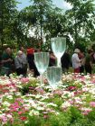 Garden Fountain Glasses