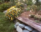 Dog Path Garden Bench