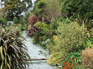 Dogpath Garden Water
