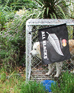 Dog Flag Kennel