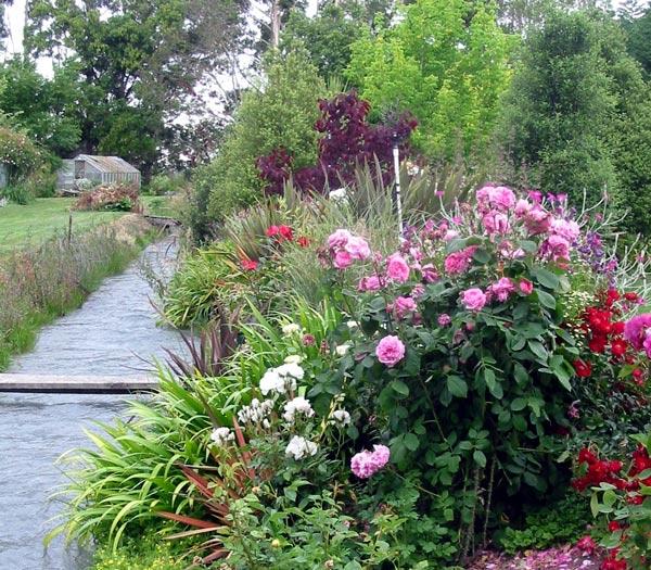 Willow tree garden for Flower garden borders