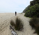 Heaphy Beach