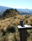 View Fence Tussock