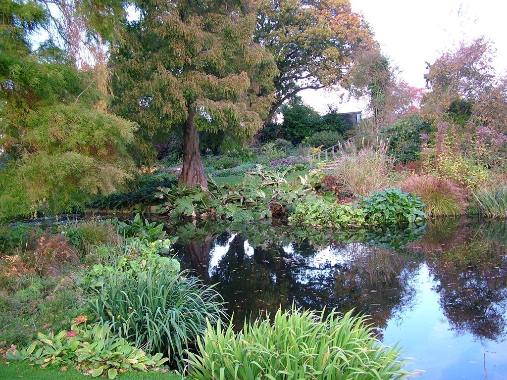 Gardens to visit beth chatto gardens plants on for Garden pond gravel