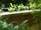 Fern Brick Wall