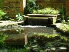 Sunny Water Feature Pond
