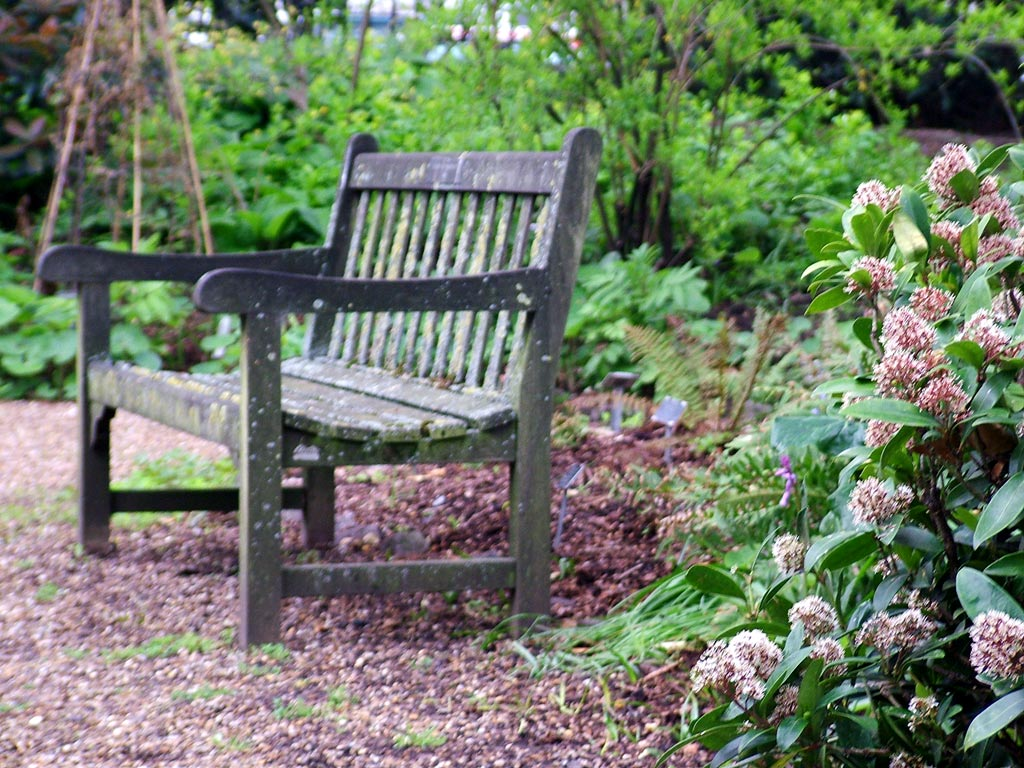 Chelsea physic garden for D i y garden bench designs
