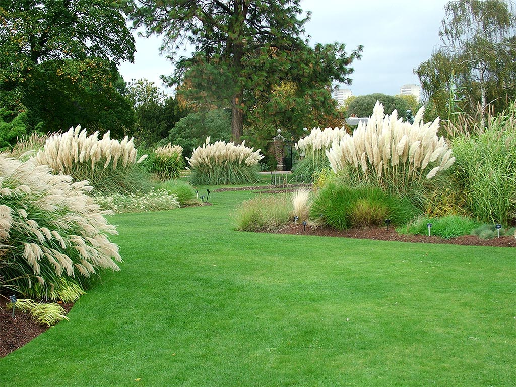 Kew gardens for Ornamental grass garden