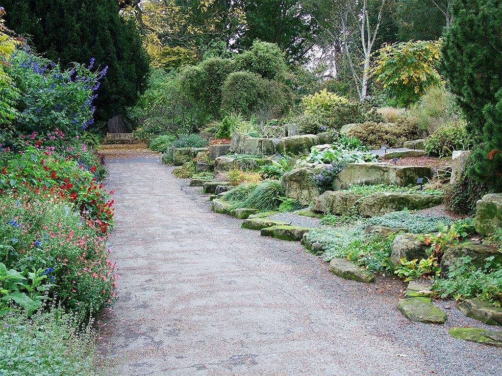 Rock Garden Salvias ...