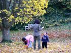 Autumn Leaves Fun