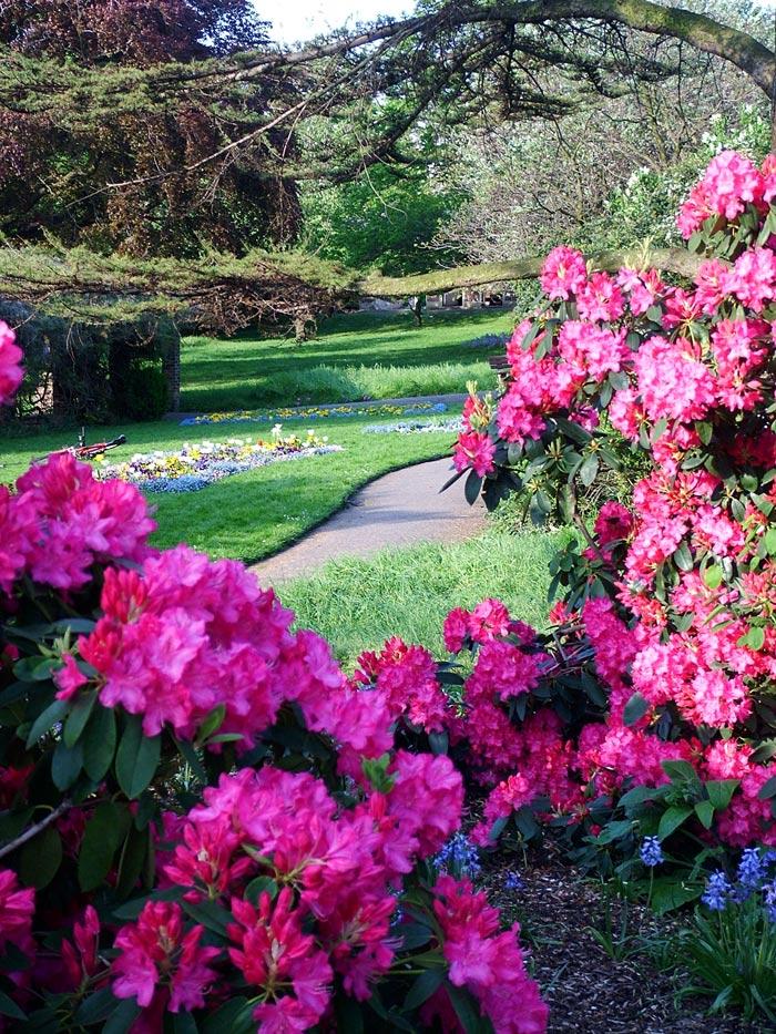 شم النسيم Meandering-garden-path